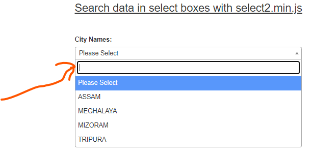 Dropdown Search Box Jquery Example With Select2.Min.Js