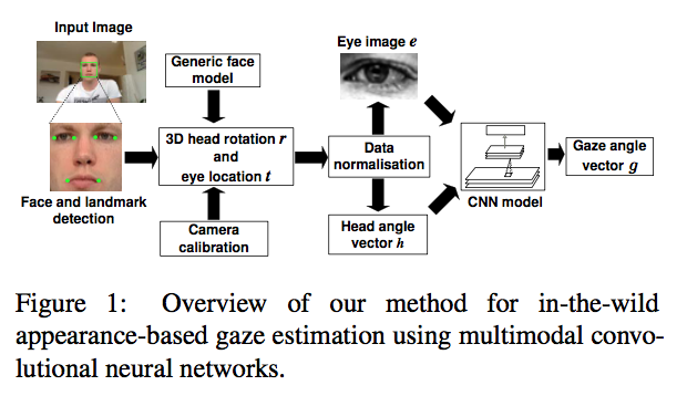 Appearance-Based Gaze Estimation in the Wild - SyncedReview - Medium