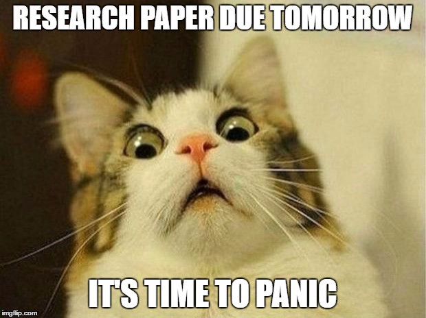 10 page paper due tomorrow reddit