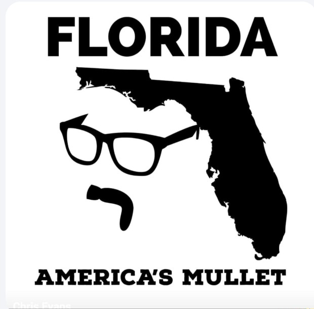 Cartoon drawing of Florida as a mullet haircut over face of man with moustache and glasses