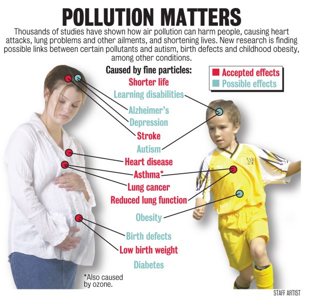 HOW DOES AIR POLLUTION AFFECT TO PEOPLE AND ANIMALS? Air Pollution Effects On Animals Scholar