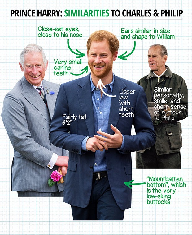 new world university prince charles is not prince harry s father by ali golub nyu local prince charles is not prince harry s