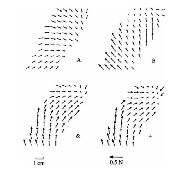 Vectorial sum of force fields