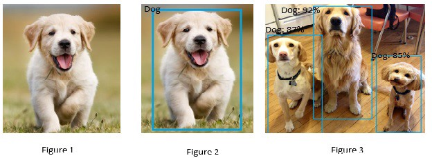 Real Time Object Detection with TensorFlow Detection Model