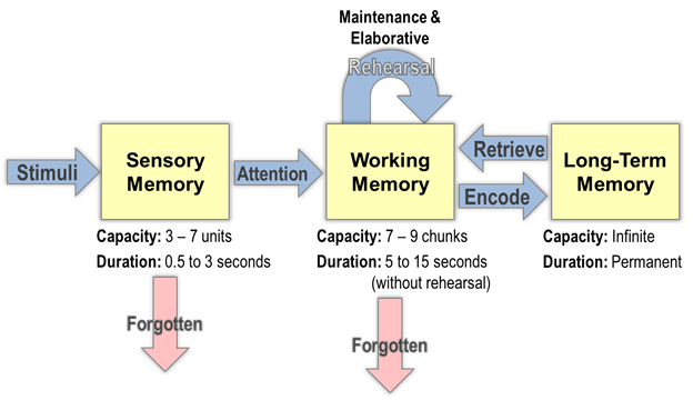 What Is Working Memory >> Similarity And Differences Between Cowan S And Baddeley S