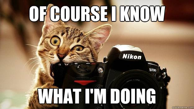 A cat chews on an expensive Nikon camera. Clearly this cat knows what he is doing. Large text reads: Of Course I Know What I'