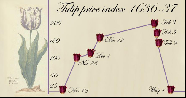 Tulip investment dws investments contact