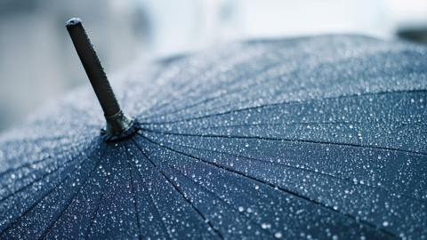 Alternative Uses For Your Regular Umbrella  - Blbee - Medium