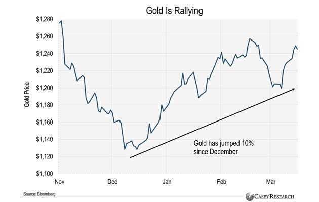 gold rallies in 2017