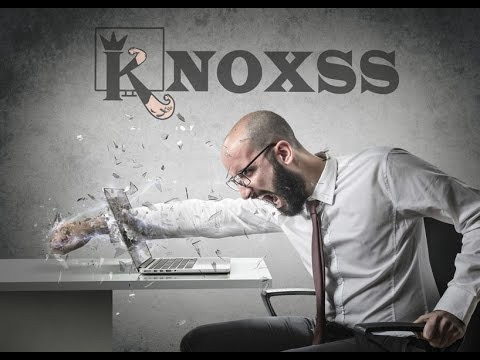 KNOXSS for Dummies! A new Detailed Guide to use KNOXSS Pro in real world