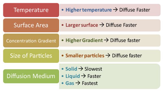 Osmosis and Surface Area/Volume Relationships - linzel - Medium