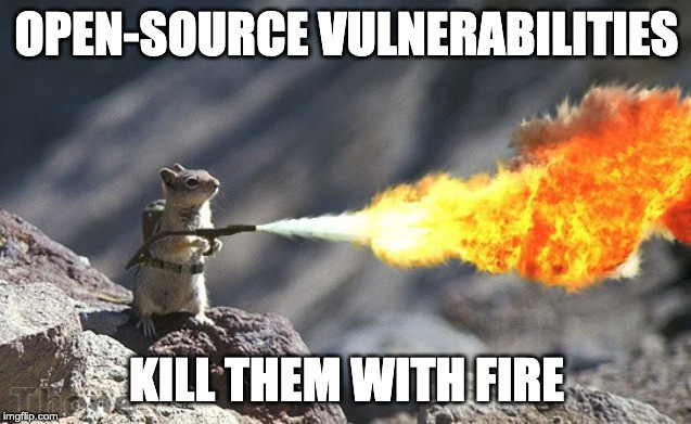 Meme: Image of a squirrel with a flamethrower. The captions read: 'Open-Source Vulnerabilities; Kill them with Fire!'