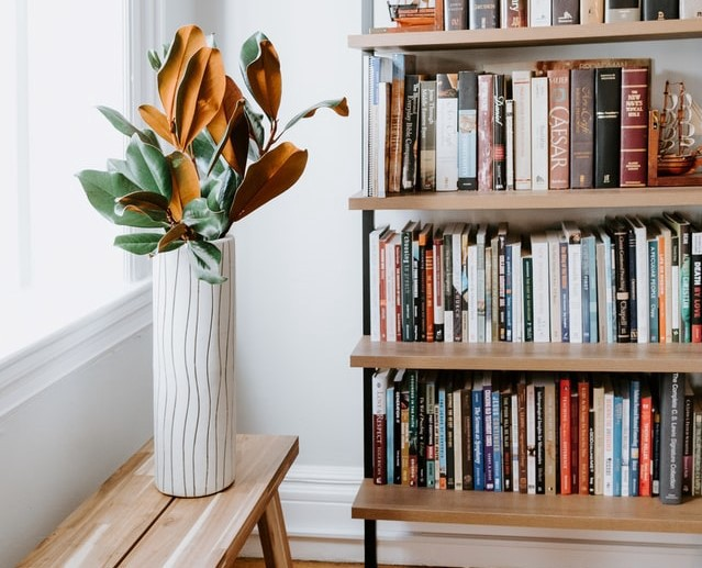 A bookshelf filled with books and a plant in a white vase, set on a bright white background with a bright window