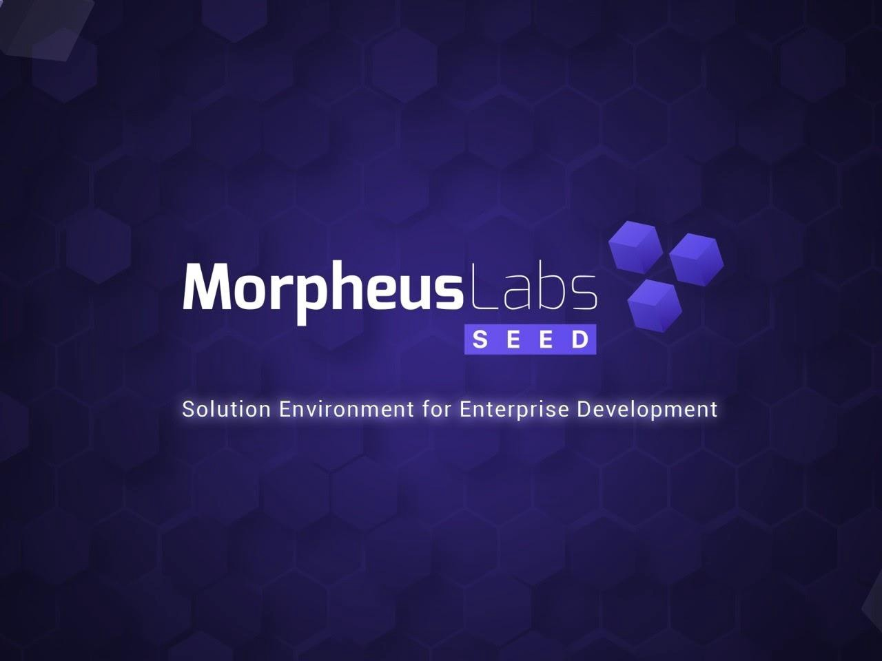 Introducing Morpheus Labs SEED