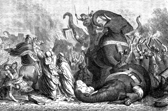 Engraving of Pyrrhus and his elephants at the battle of Asculum
