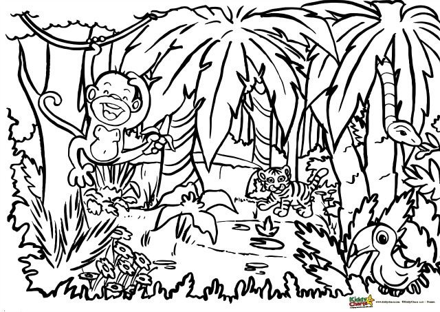 Jungle Coloring For Adults And Kids By Helen Neale Medium