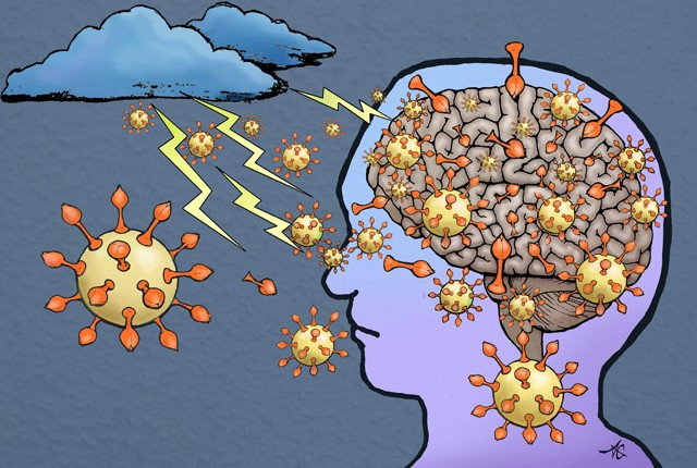 Coronavirus attacking the brain