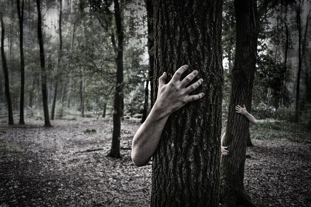 A picture of creepy hands surrounding tree trunks in a wood