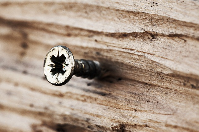 Screw head coming out of a piece of wood.