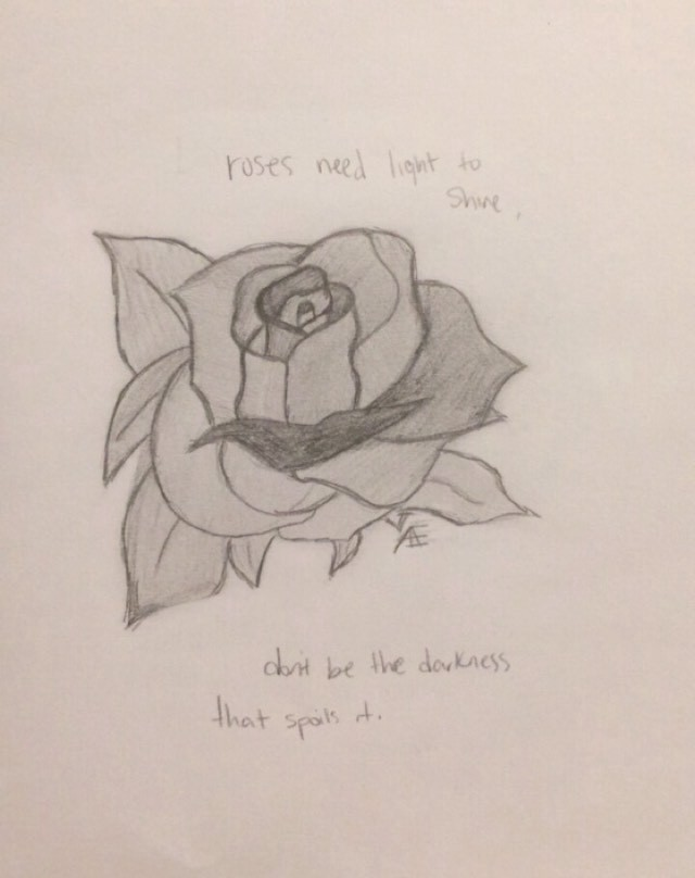 """This is a black-and-white drawing of a rose that reads """"roses need light to shine, don't be the darkness that spoils it."""""""