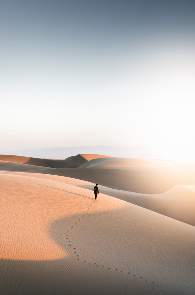 Dune desert journey book movie