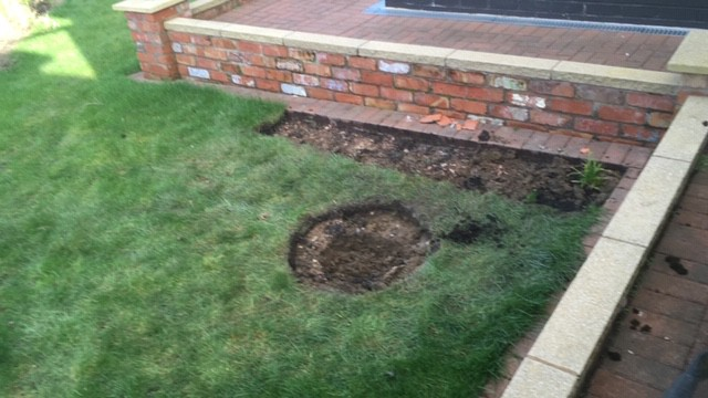 A semi-shaded spot identified; we start cutting turf and dig the deeper section