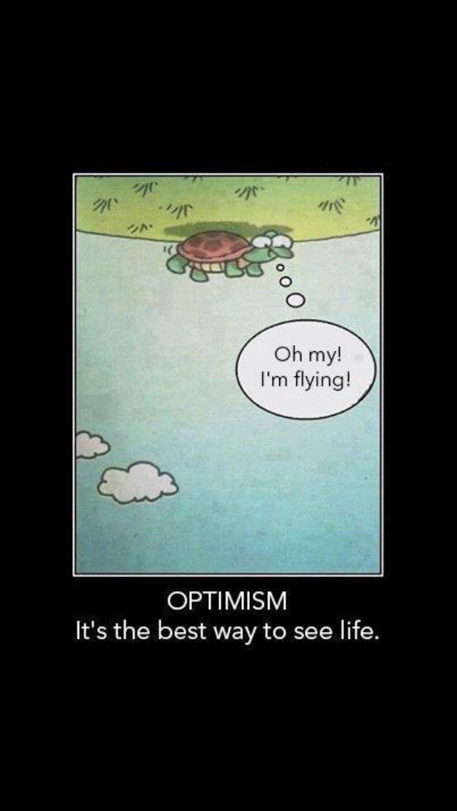 cartoon of a turtle laying on his back shell and all he sees is the blue sky with clouds. words Oh my I'm flying