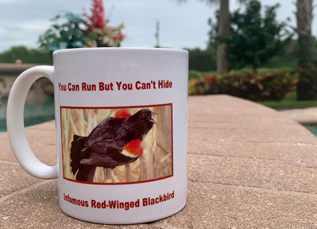 """Picture of white mug that says, """"You Can Run But You Can't Hide…Infamous Red-Winged Blackbird"""" with picture of red-wing blackbird perched on tall stems."""