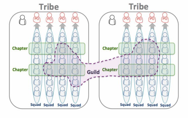 Drawing of the spotify agile organization. Shows squads, chapters, tribes and guilds different groups that can be assembled