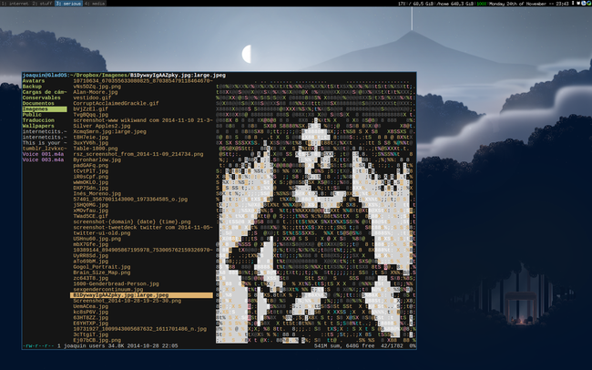Your guide to a damn light Arch Linux with i3 and text apps