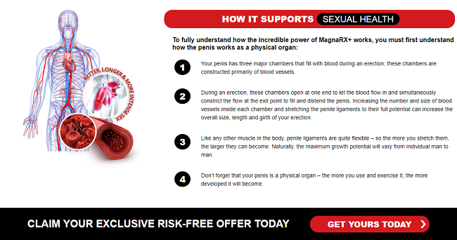 Free Giveaway Without Survey  Magna RX Male Enhancement Pills