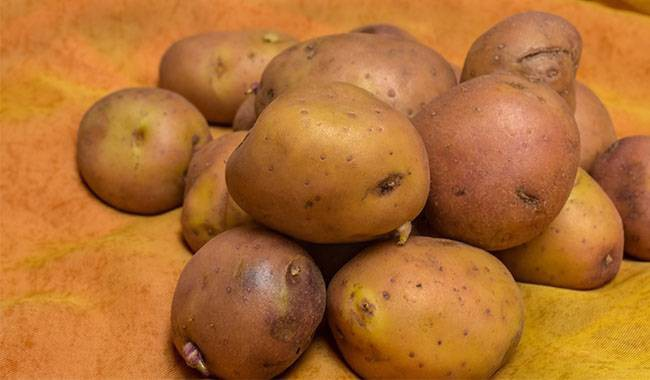 Storage them long term, and how to save seed potatoes
