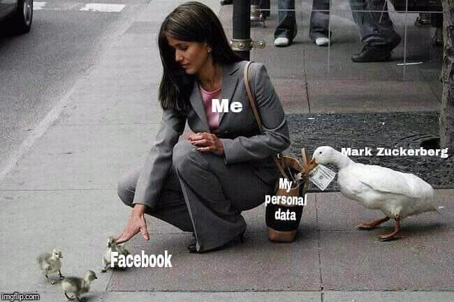 Person (Me) petting a baby goose (Facebook) while an adult goose (Mark Zuck) steals cash from her purse (My personal data)