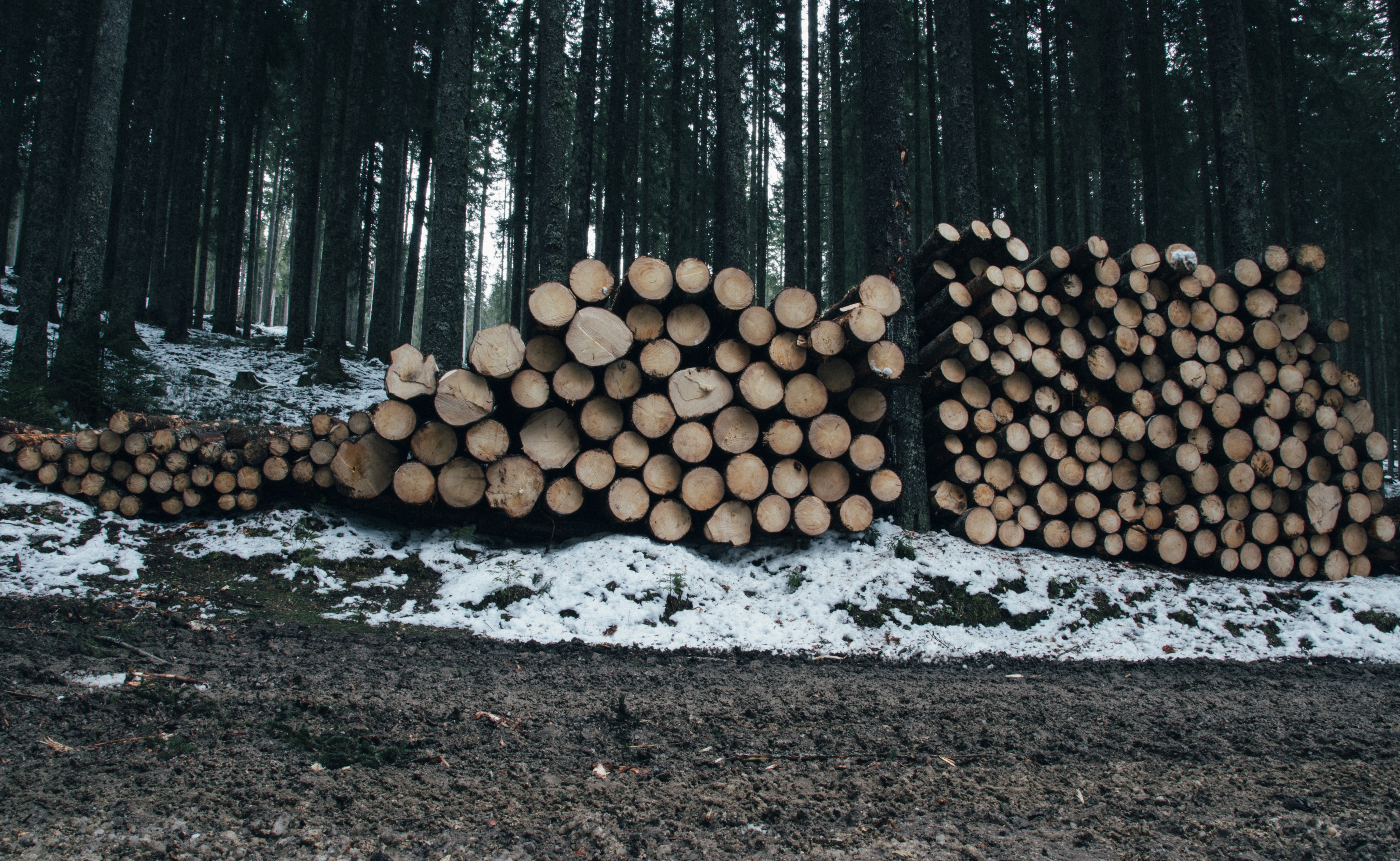 Logging on the Cheap. Ultra-low-overhead logging for the JVM | by Emil  Koutanov | ITNEXT