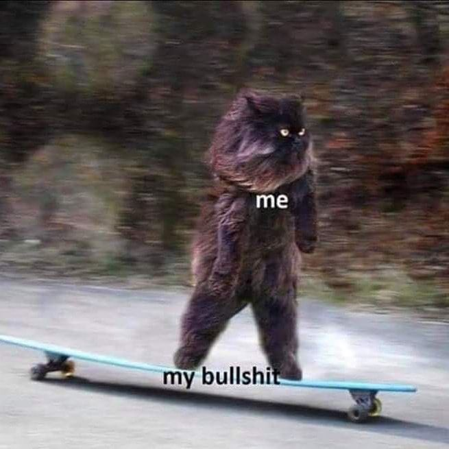a cat standing up on its hind legs on a longboard (skateboard) going down a relatively gentle slope. The cat is captioned me and the longboard is captioned my bullshit, thus showing that I am back on my bullshit.