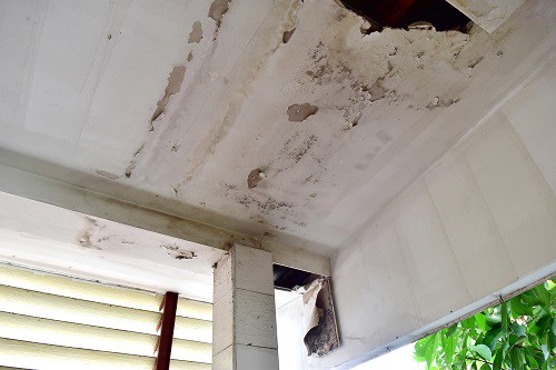 What Causes Paint to Crack, Peel, And Bubble? - Bill