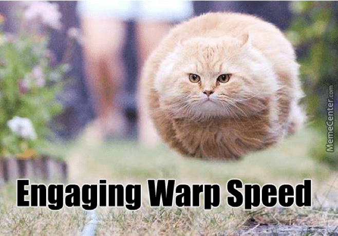 A meme of a cat with the tagline 'engaging warp speed'
