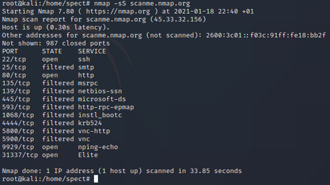 TCP SYN Scan