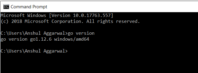 Golang version on command prompt
