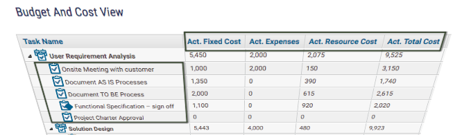 Actual Fixed Cost, Actual Resource Cost at Task Level- KPIs for Project Manager