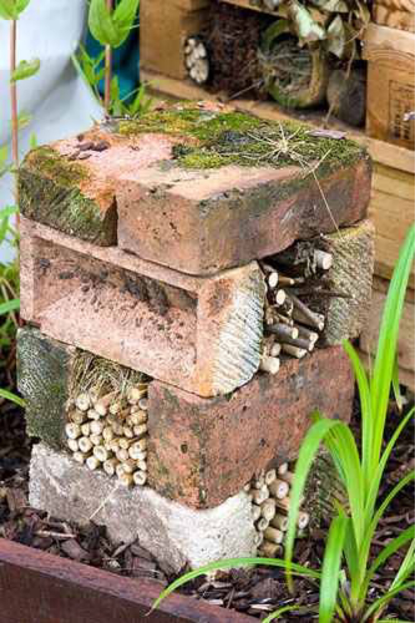 Our Bug Hotel Is Open, Come On In