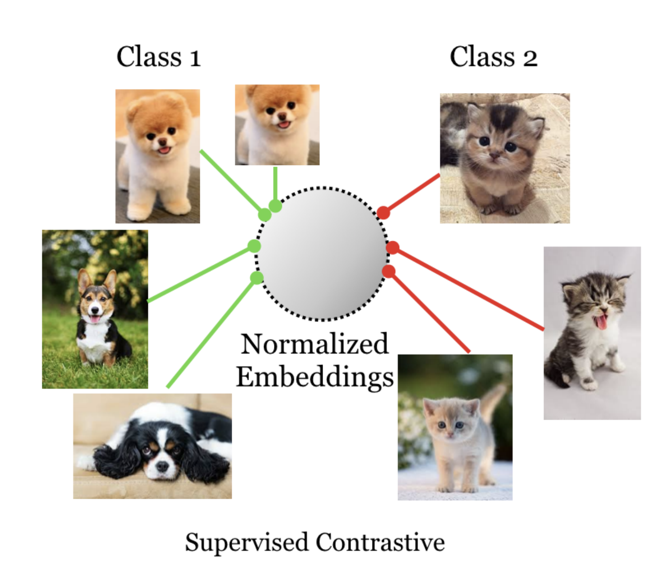 Self Supervised Contrastive Loss classes
