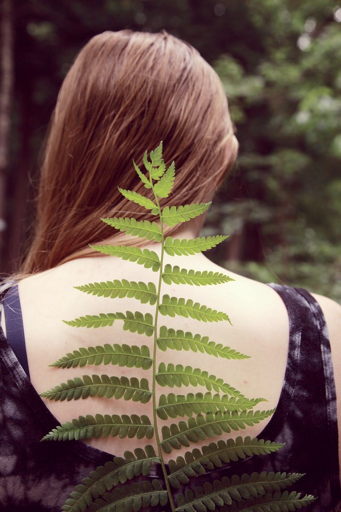 The backside view of a young woman with long brown hair swept over her let shoulder with a green plant placed delicately on her spine