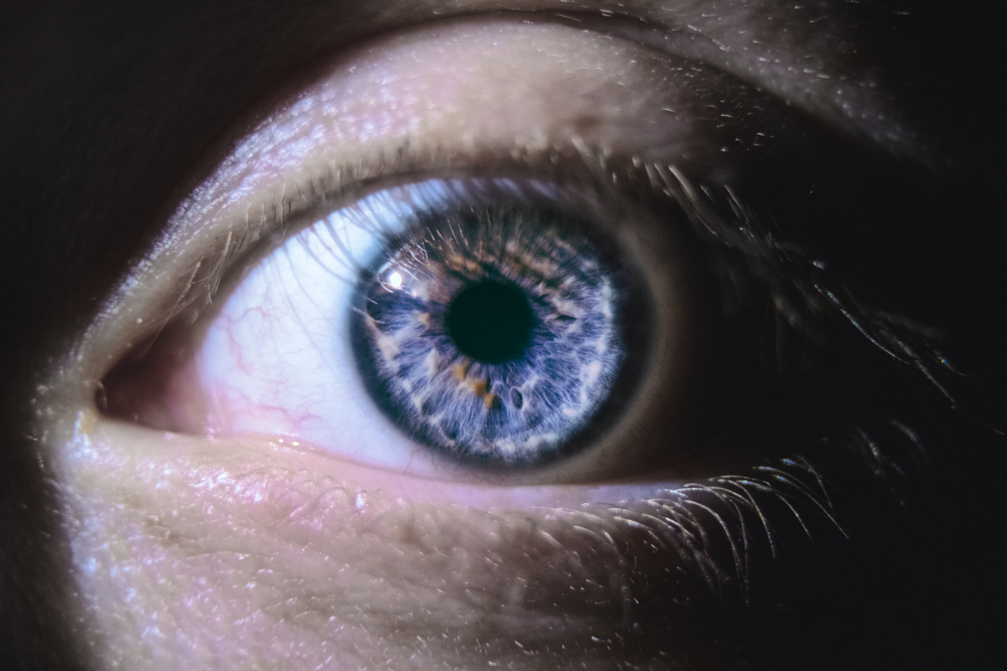 Close up photo of a person's eye