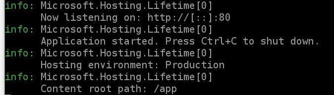 Successfully running container