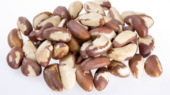 Health benefits of Brazil nuts. Brazil nuts are rich in selenium. Brazil nuts are good for you.