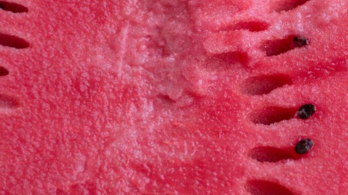 calories in watermelon, yellow watermelon, how to cut a watermelon, how to cut watermelon, watermelon salad, how many calories in watermelon, watermelon carbs