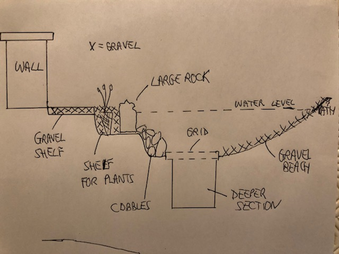 Final outline sketch—cross section