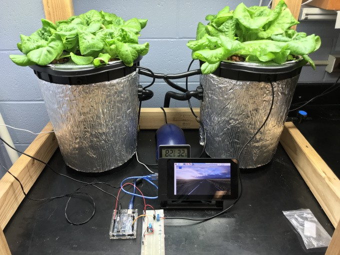Meet the middle Mars farm - Learning by Making - Medium Ze Houseplant on