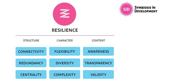 Diagram representing three aspects of resilience: structure, character, and content